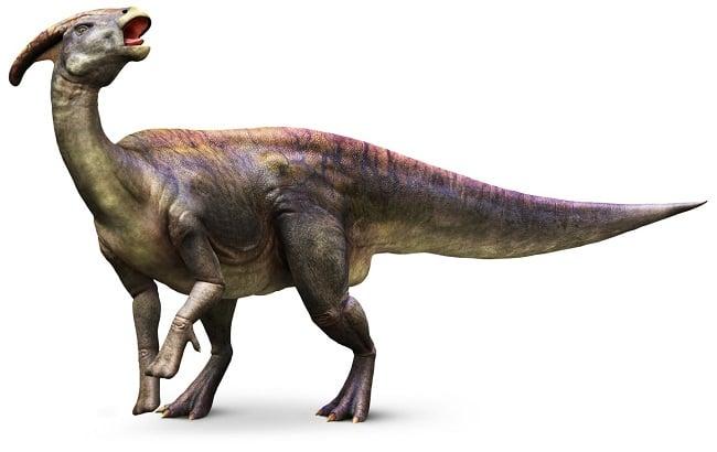 Parque jurásico Parasaurolophus