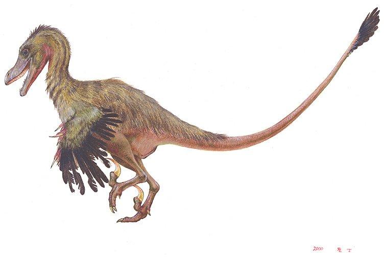 Jurassik Park velociraptor