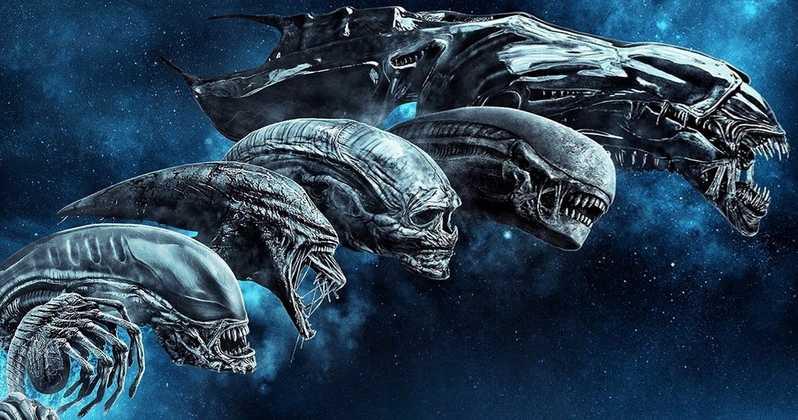 Xenomorfo evolución a Alien