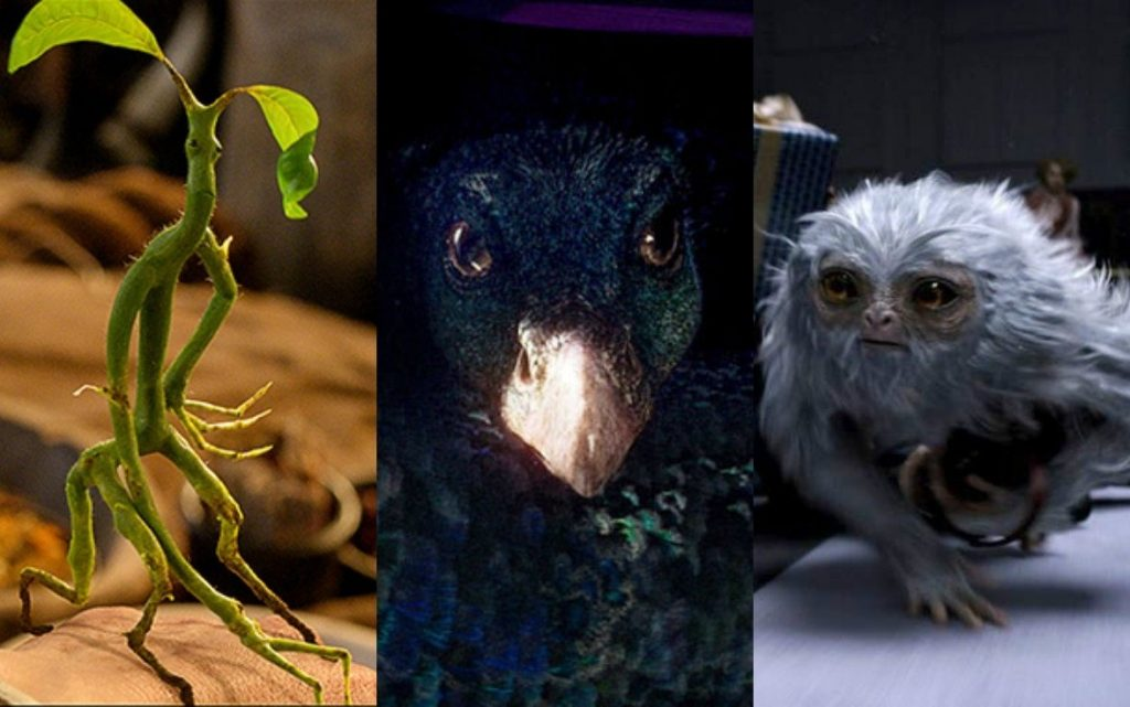 Animales fantásticos criaturas extraordinarias
