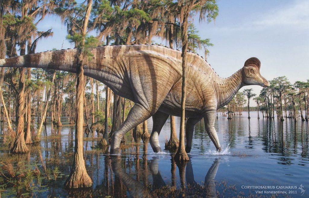 Dinosaurio Corythosaurus